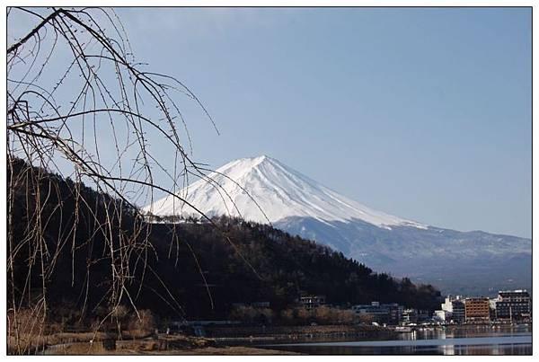 河口湖下富士山.JPG