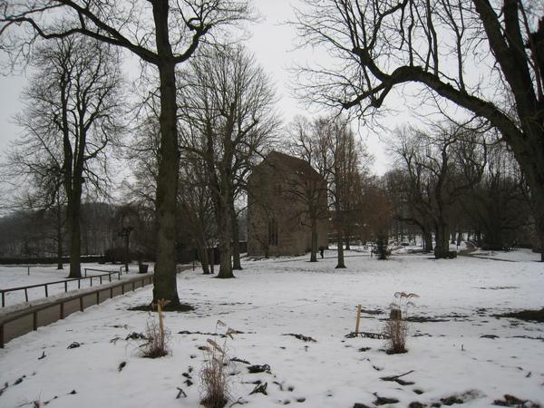 雪景讓我想起了加卡利