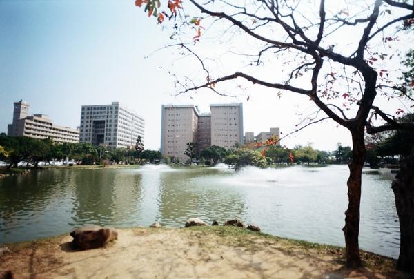 中興湖是個很好取材的地點