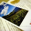 Postcards connecting the world-110508 005.jpg