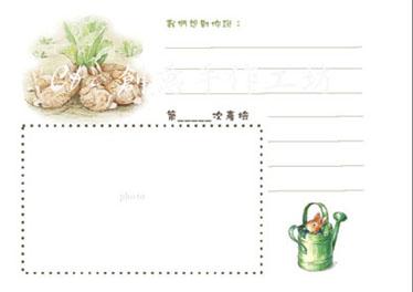 C&c 寶寶成長日記內頁設計 (11).jpg