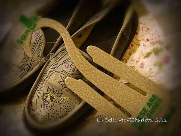 La Belle Vie- 110502Oh my Sanuk shoes 006.jpg