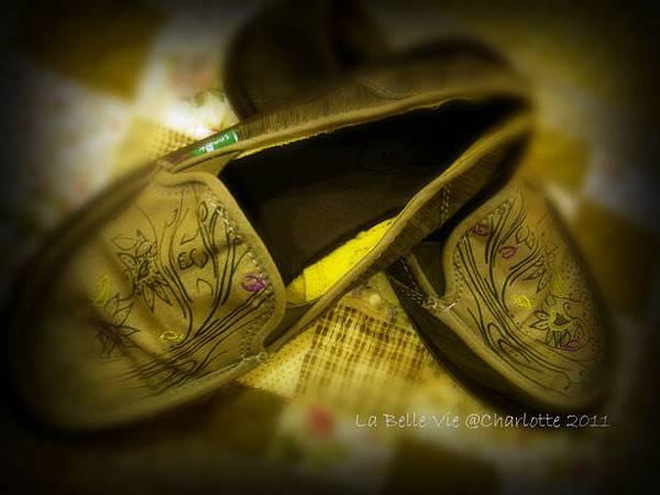 La Belle Vie- 110502Oh my Sanuk shoes 003.jpg