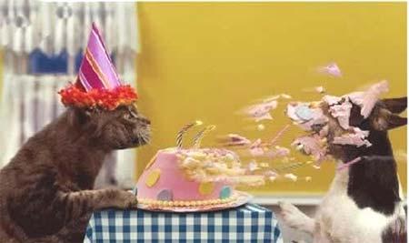 [祝妳生日快樂...]