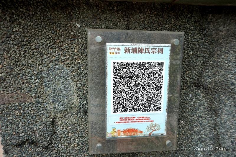 DSC06594.jpg