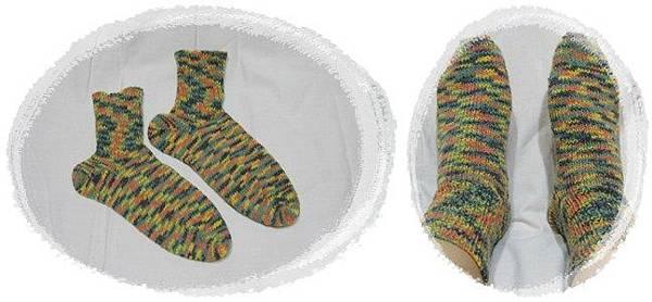 sock 003-horz.jpg