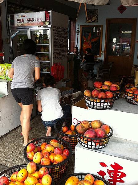 暑假就是芒果鮮