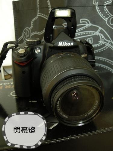 DSCN0273.jpg
