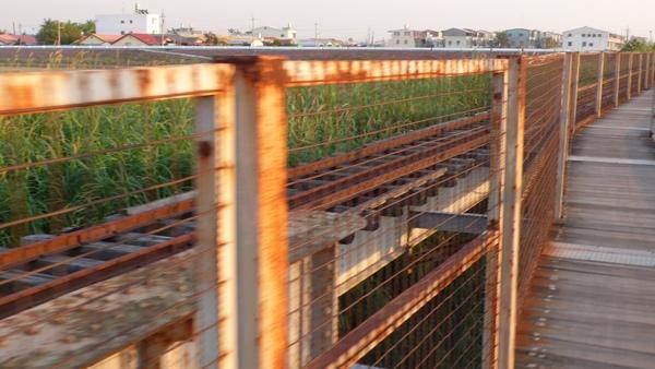 來到這裡,只剩下主鐵路,旁邊的鋼樑便己不見