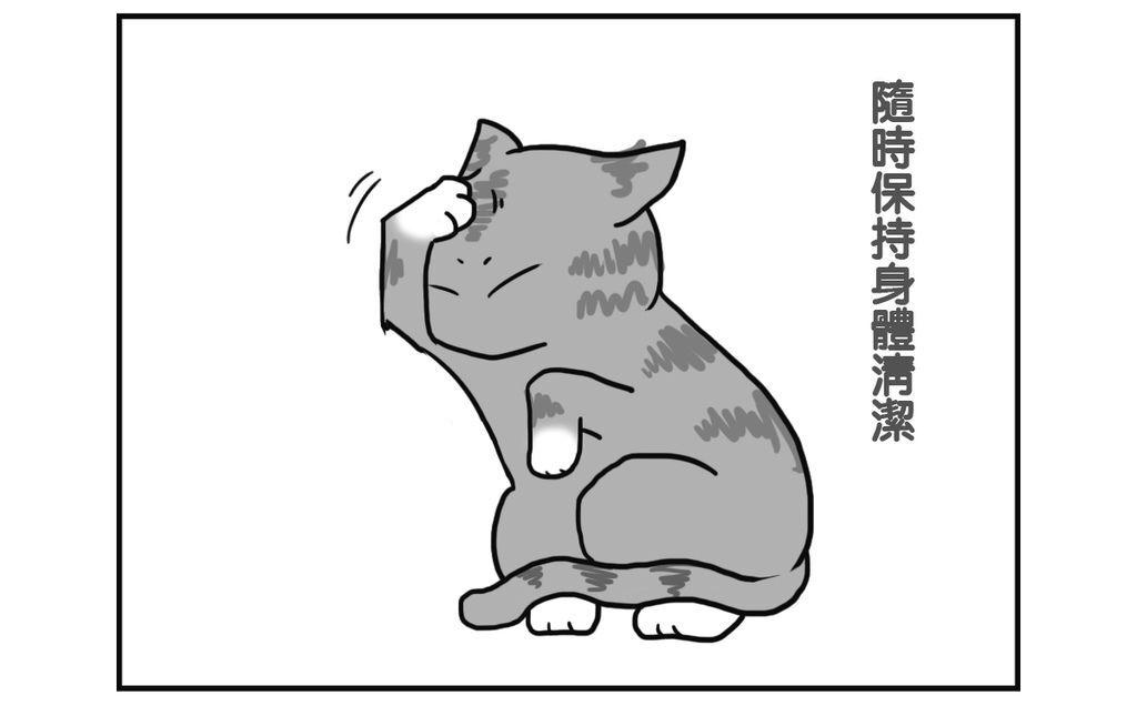 CAT001 - 複製