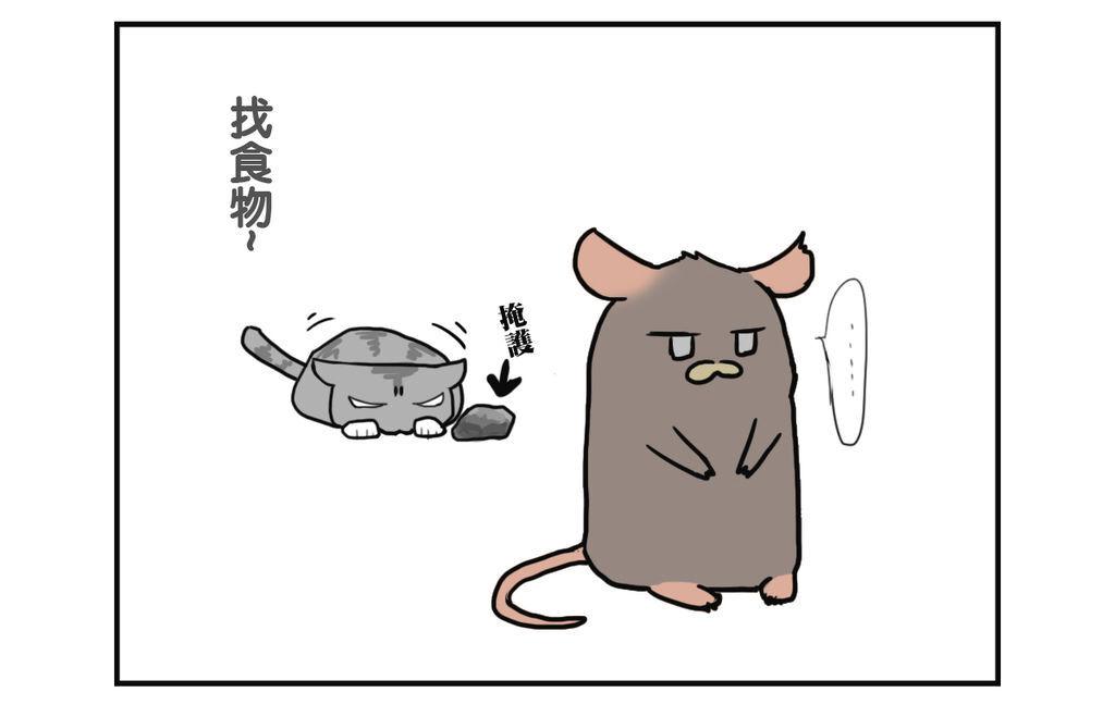CAT001 - 複製 (3)