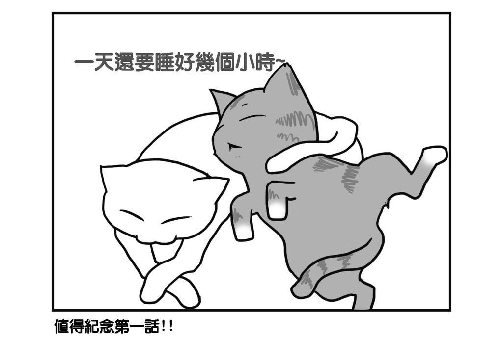 CAT001 - 複製 (2)