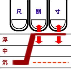 溫病初起脈型3.jpg