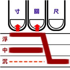 溫病初起脈型6.jpg