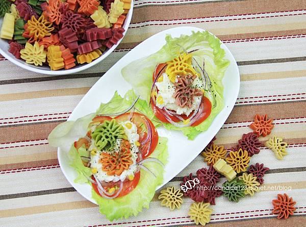 洋芋蔬菜沙拉6