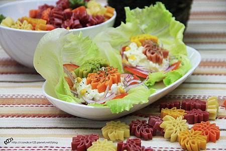 洋芋蔬菜沙拉11