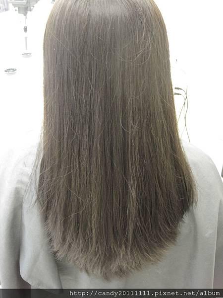 威帝美髮集團----100元快剪