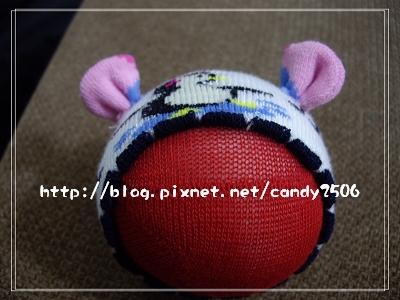 IMGP3808.jpg