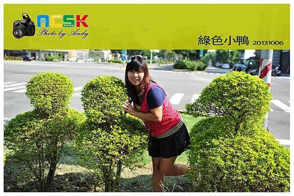 DSC_8445-ok