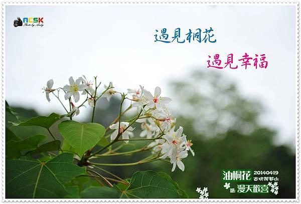 DSC_3682.jpg