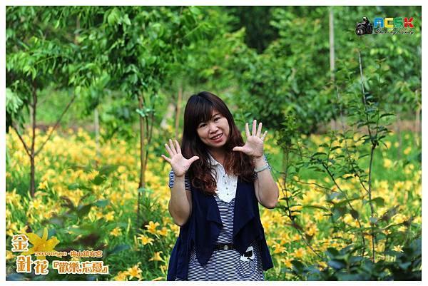 DSC_4042a.jpg