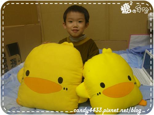 黃色小鴨03