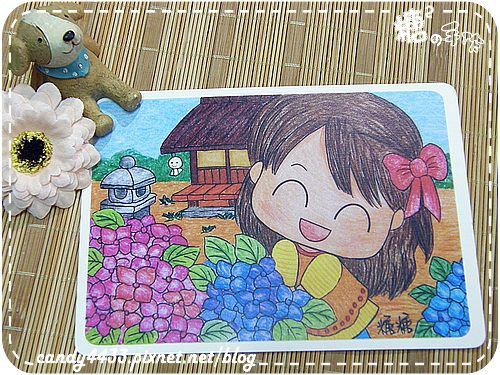 五月歲時記-雨季裡的紫陽花