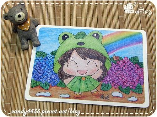 五月歲時記-雨季裡的青蛙雨衣
