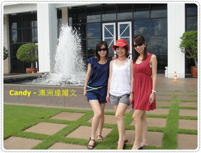 三朵花來一張合照.jpg