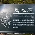 056-1.jpg