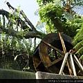 綠屋頂前水循環.jpg