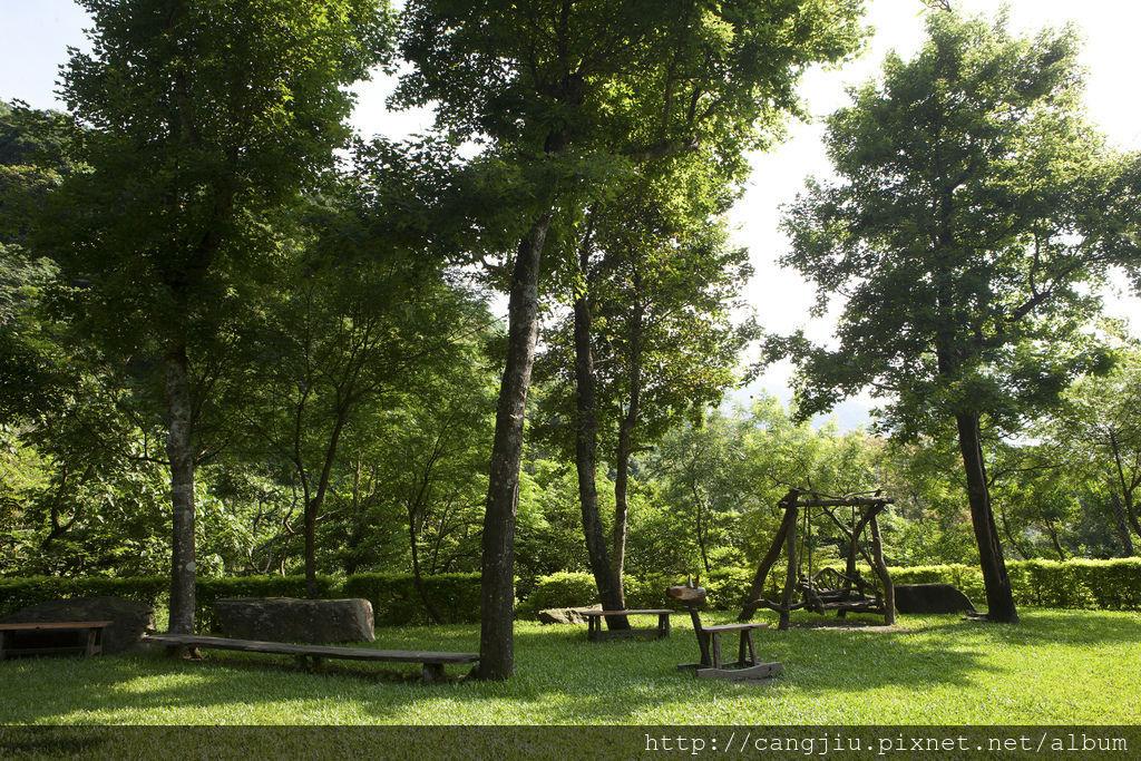 藏酒廣場草坪