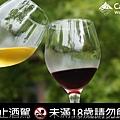 藏酒紅白葡萄對酒