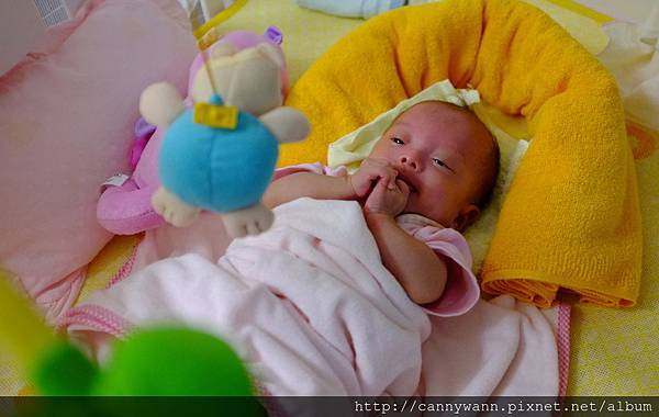 雪莉和她的玩具 (1).jpg
