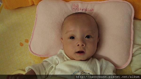 可愛的雪莉 (6).JPG