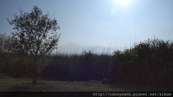 大安溪峽谷秋景2011