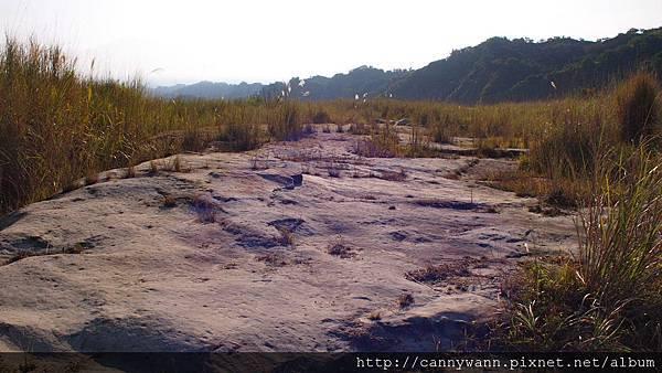 大安溪峽谷2011