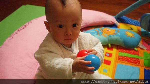 2012.01雪莉寶貝 (5).JPG