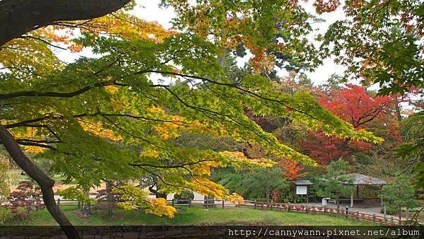 弘前城公園 (6)