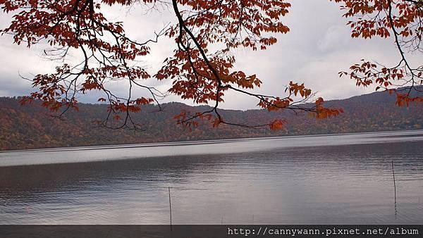十和田湖遊船&湖畔散策 (19)