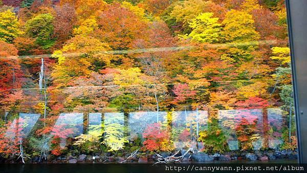 十和田湖遊船&湖畔散策 (31)