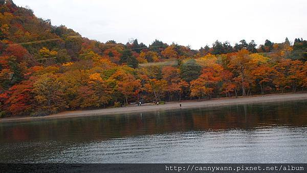 十和田湖遊船&湖畔散策 (28)