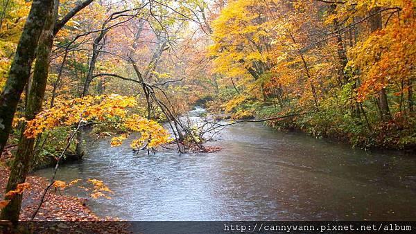 奧入瀨溪流散策 (23)