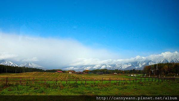 窗外山上的雪景