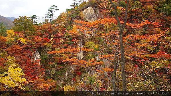 鳴子峽的秋景 (6)