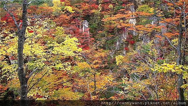 鳴子峽的秋景 (7)