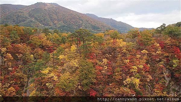 鳴子峽的秋景 (1)