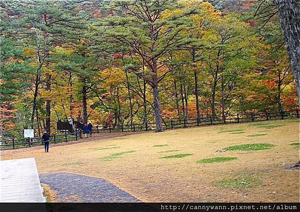鳴子峽的秋景 (4)