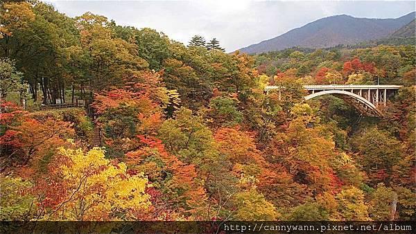 鳴子峽的秋景 (3)
