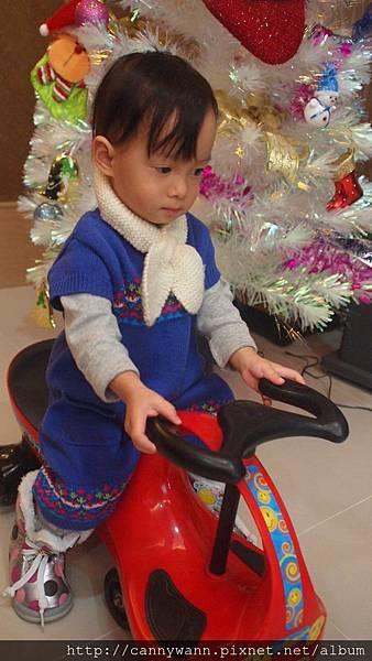 20121223到姐姐家看聖誕樹 (6)